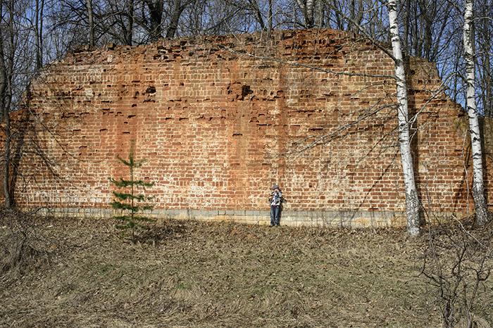 Гусь Железный крепостная стена