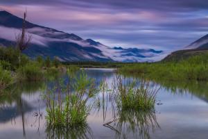 Якутия болото.jpg