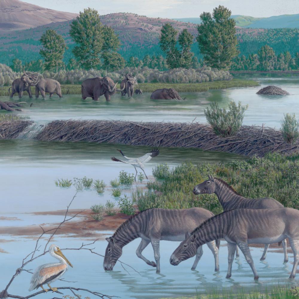 Реконструкция неогеновой фауны
