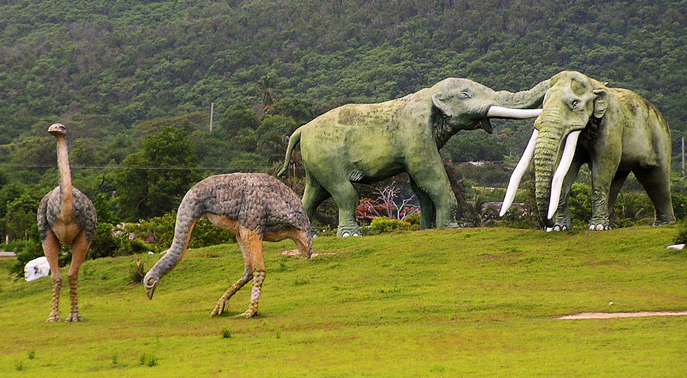 Доисторическая долина на Острове Свободы