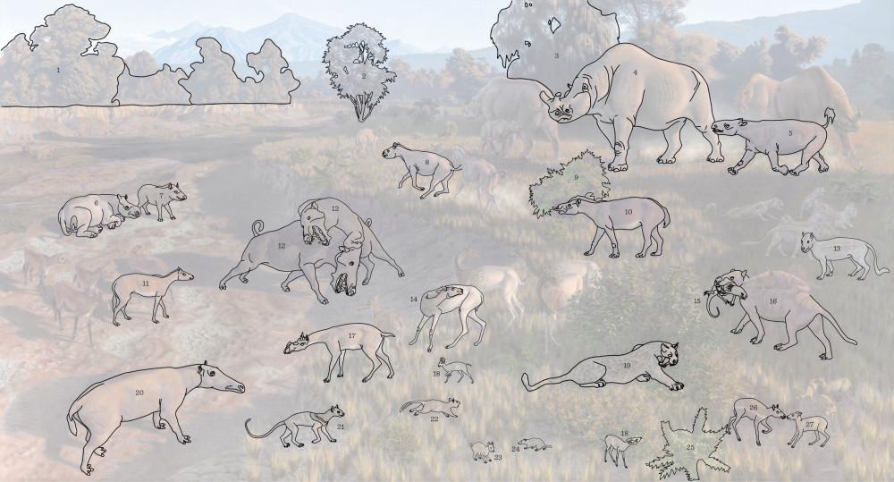 Реконструкция экосистемы позднего эоцена