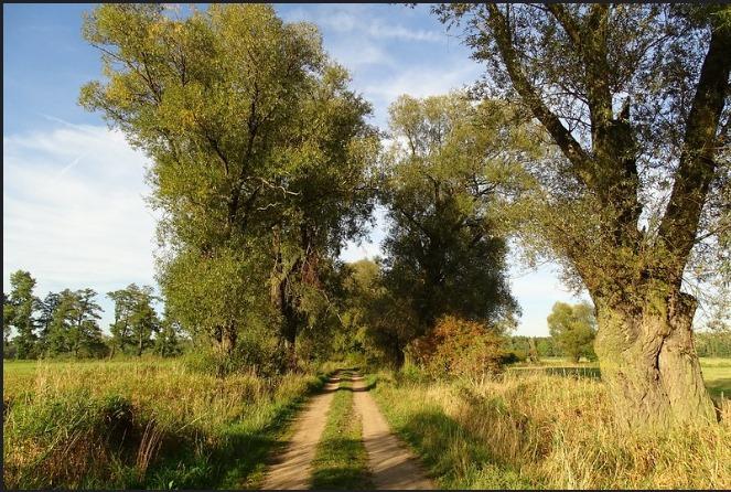 Юг Росси - Донская земля