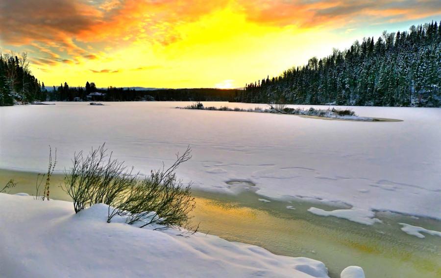 landscape-4688632_1280.jpg