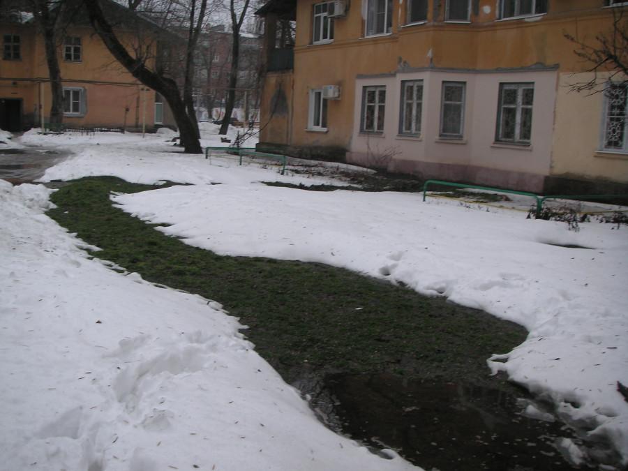 Проталина под снегом