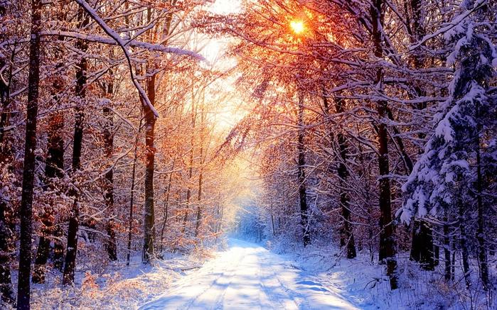 70947404_wintermorning1440x900