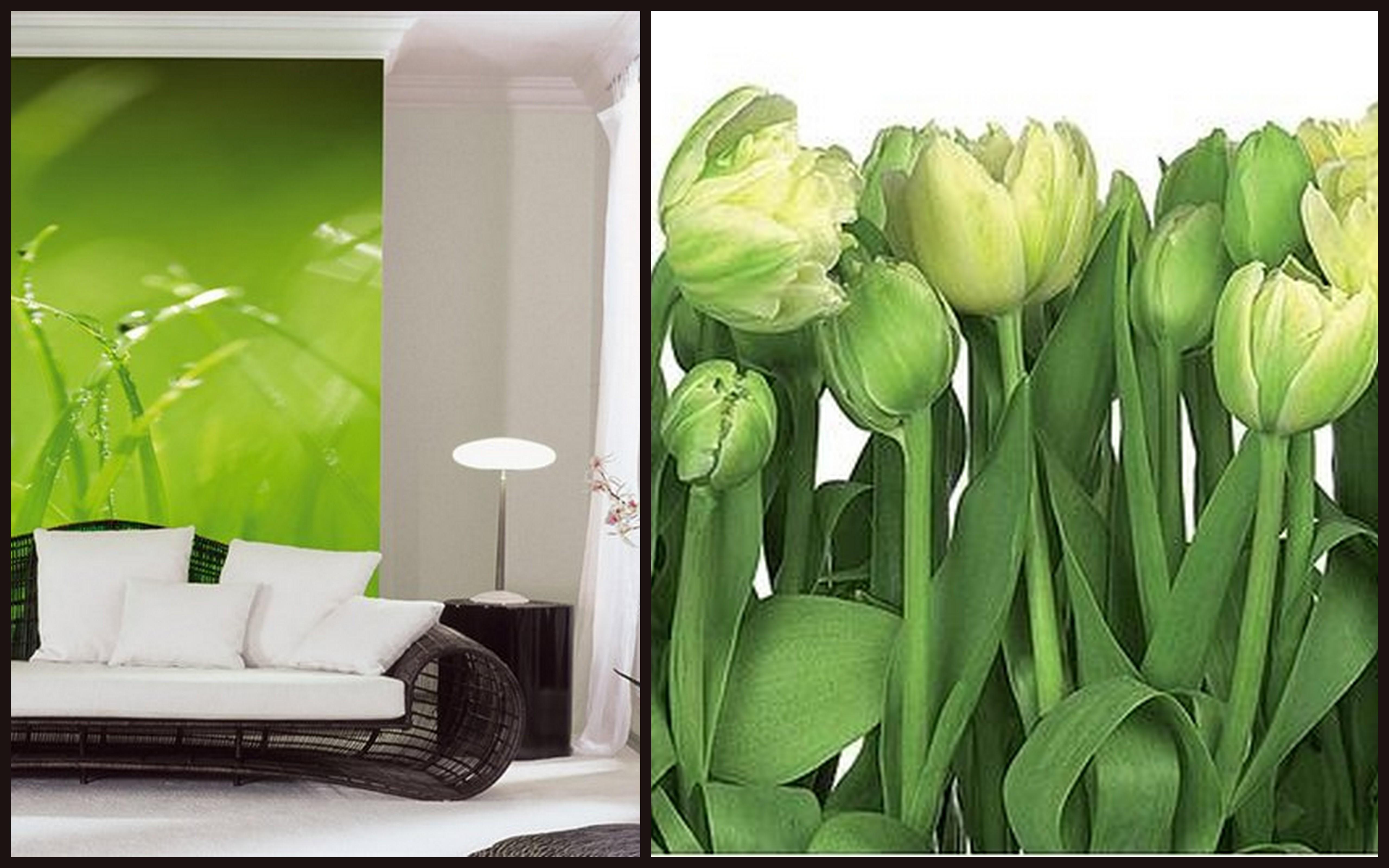 Зеленые тюльпаны фотообои