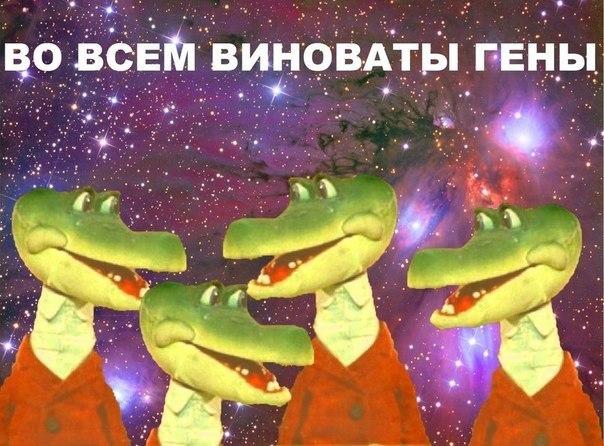 f35gAQNMwkg