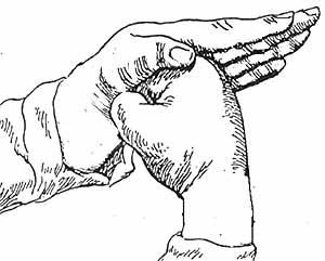 Випарита-карани-мудра - одна из ключевых мистических практик йоги