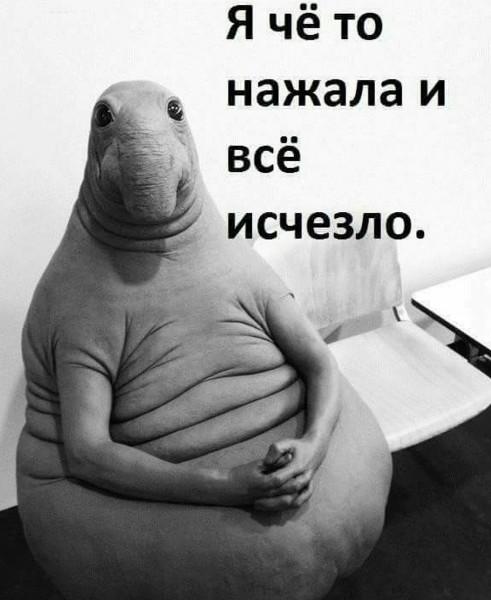 718941_600.jpg