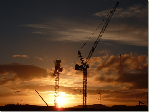 Cranes at Sunrise (My own crop)