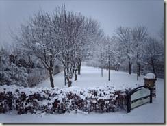 Snow in Dundee