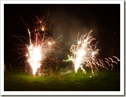 Fireworks 025