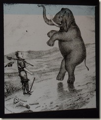 "A miner ""sees the elephant"" (the experience of taking part in the Gold Rush)"