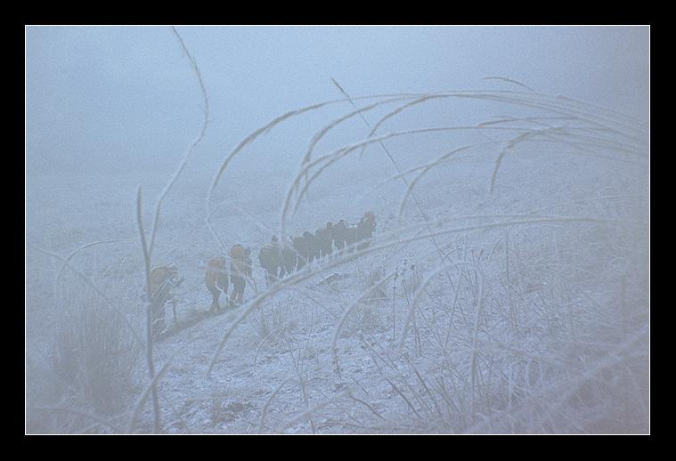 1986.Ноябрь.Тише воды,ниже травы