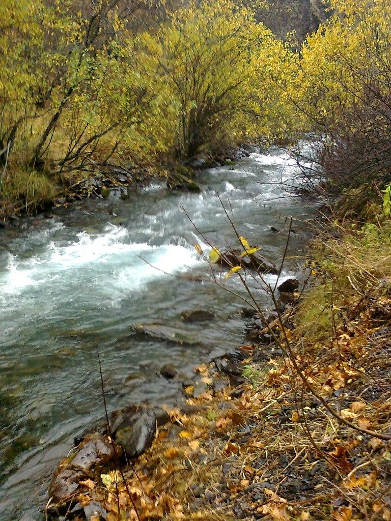 река армхи