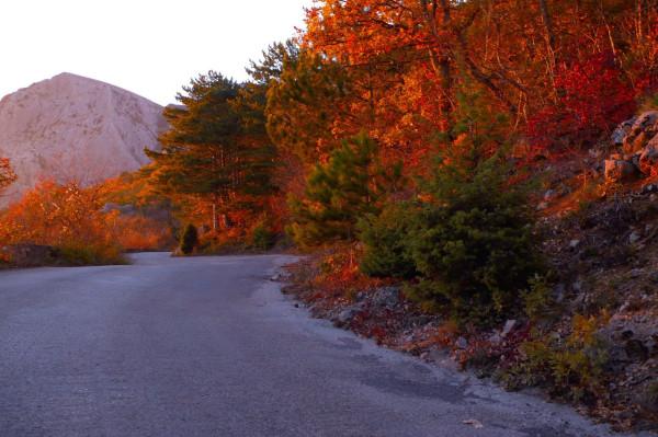 дорога рядом с лагерем