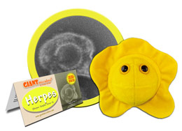 Stuffed Giant Microbes: Perfect choice for Doctor Gifts