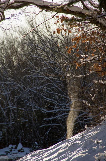 Snow Maiden-Spikesgirl58