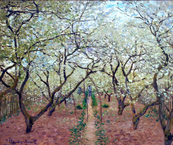 orchard-in-bloom