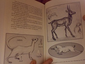 Animal illustrations from his sacred bones