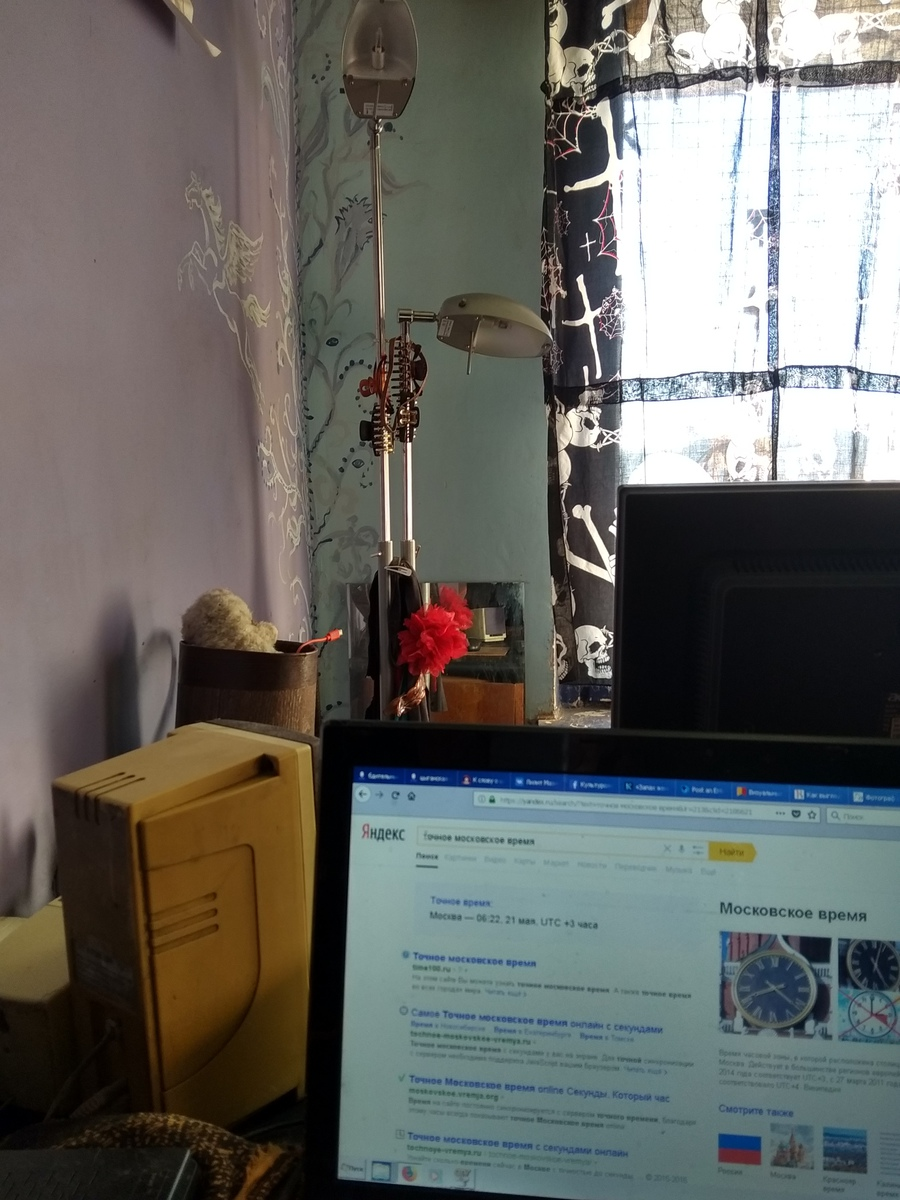 Один мой почти выходной день в Москве после, Москве, только, сейчас, котиков, Подруга, поезда, пришла, неделю, передержке, ученица, когда, работу, метро, Москва, просто, стене, бубном, половина, щёлкнуть