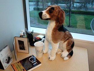 A stuffed Beagle