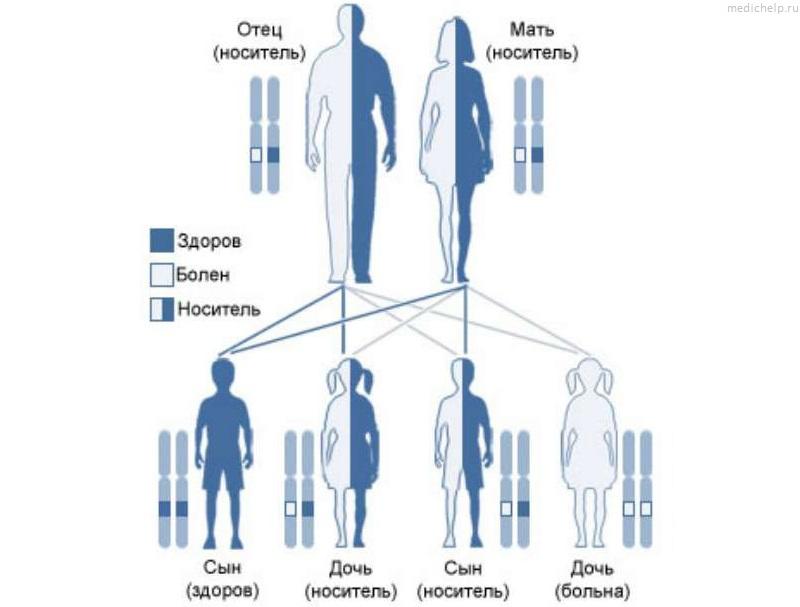 Основы биохакинга: знай свой генетический код