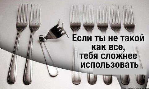 528201_569185796441438_1103508723_n