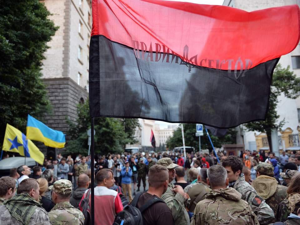 На Западе Правый сектор назвали фашистской организацией
