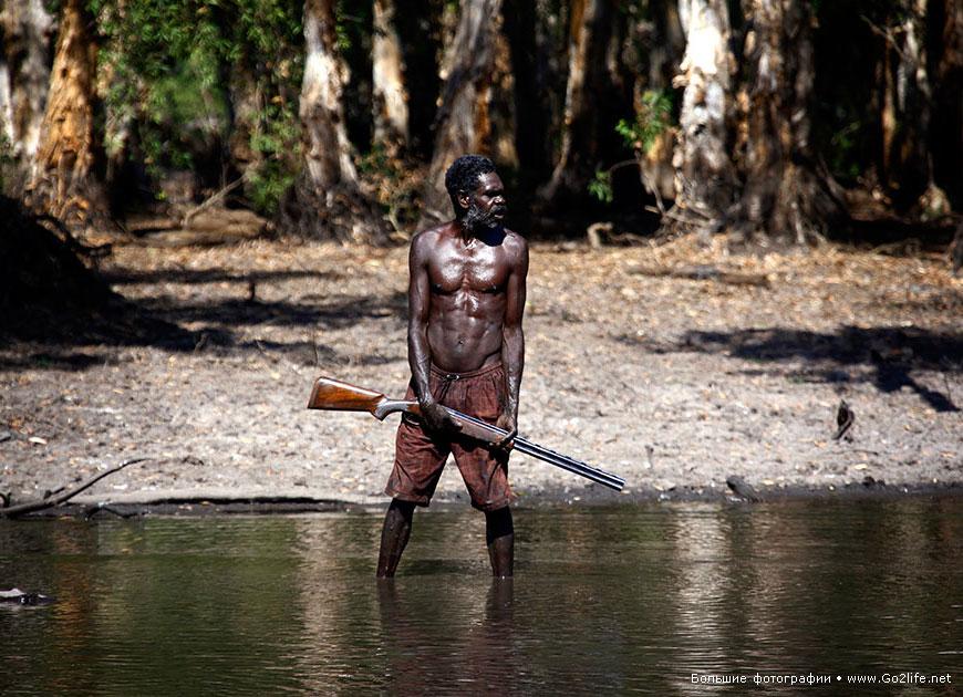Абориген против хищника