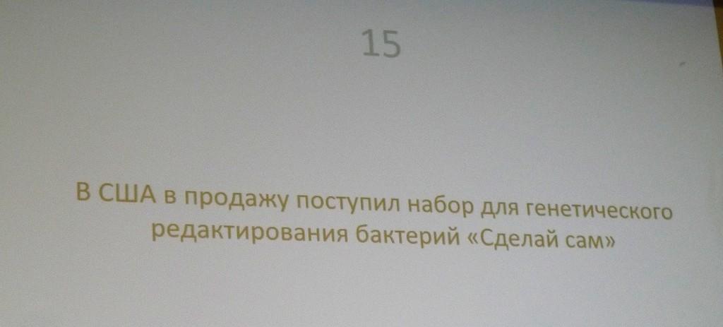 P1660532.JPG