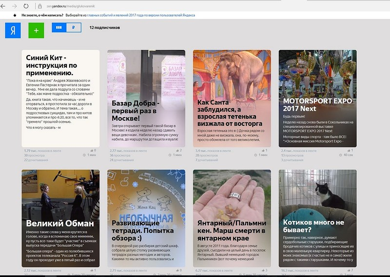 Яндекс-Дзен.jpg