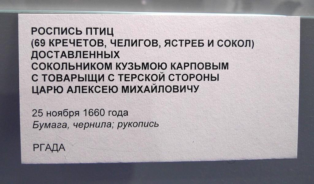 P1640995.JPG