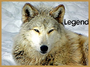 Legend 3.18.2012 (gale) (2)