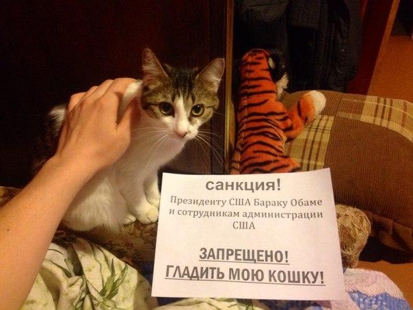 liveinternet.rulara_liberty-3