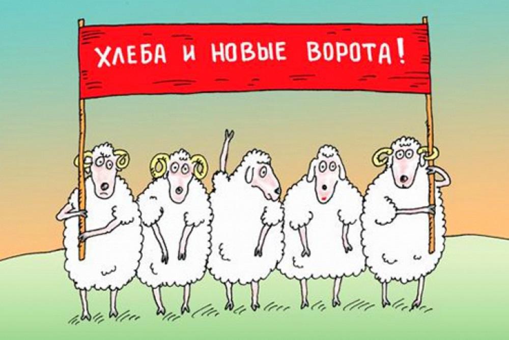 Кабмин обязал Минюст проверить компетентность госрегистраторов - Цензор.НЕТ 874