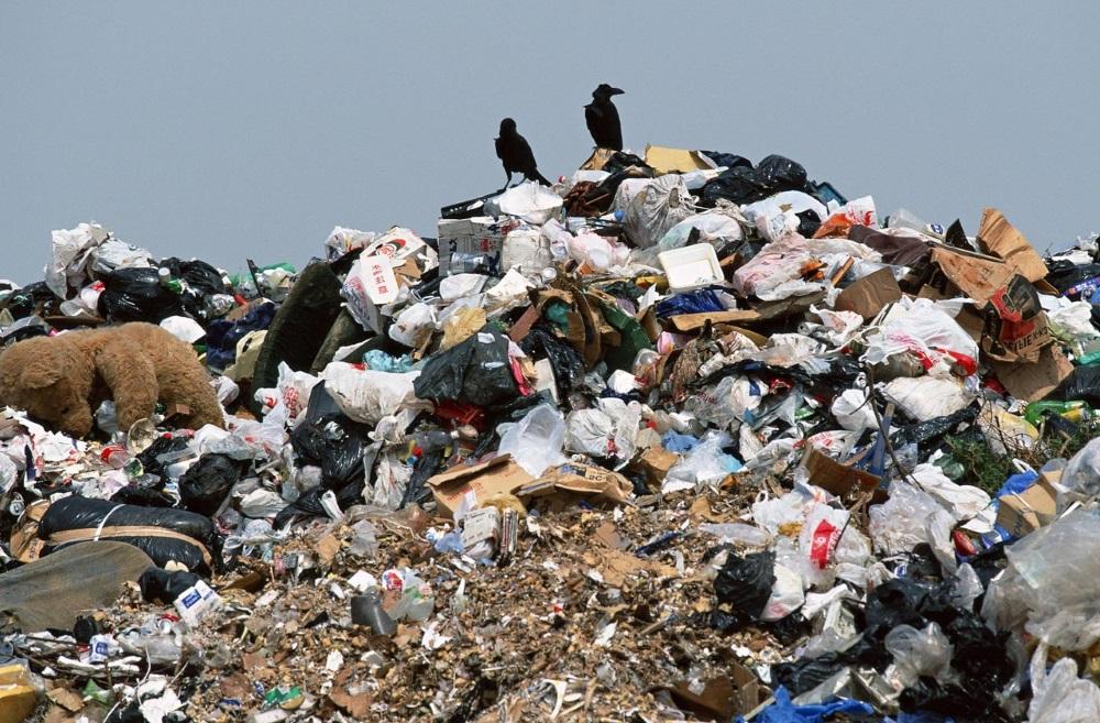 Если вы не занимаетесь мусором, он займется вами