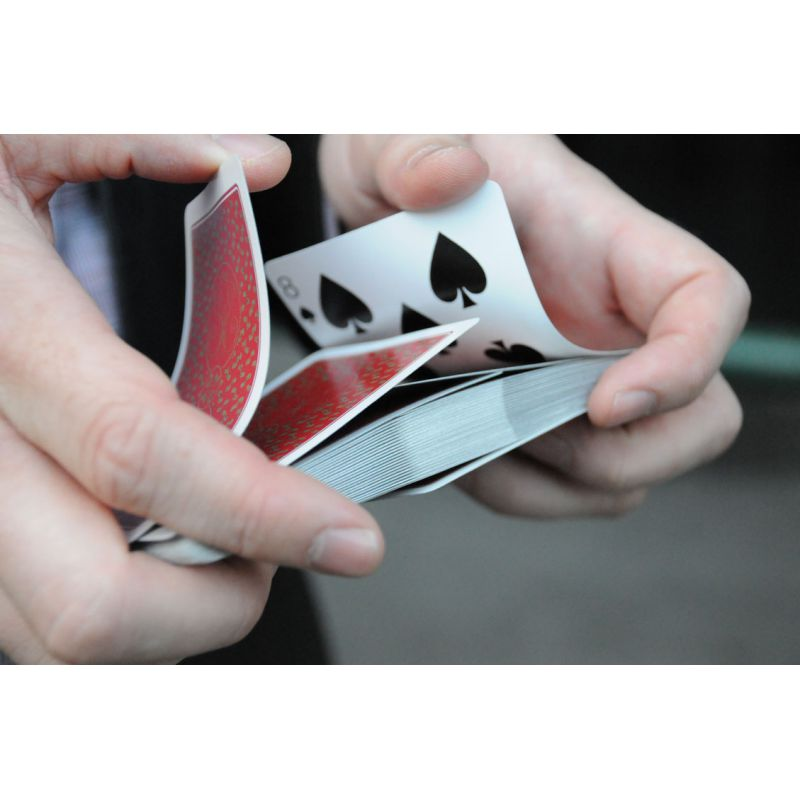 erdnase-red-acorn-cambric-playing-cards