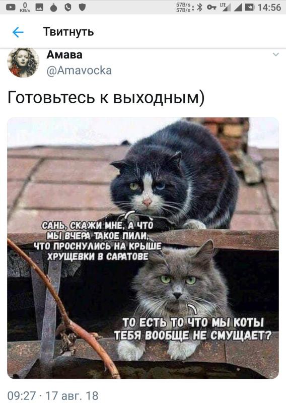 pONa_HAANJE