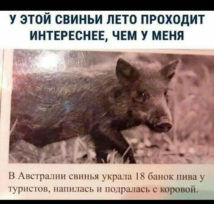 IMG_20190616_020406_062