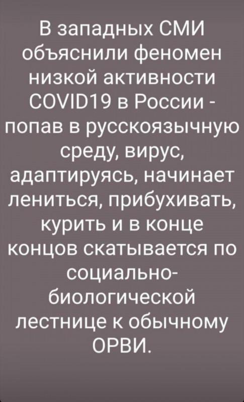 WhatsApp Image 2020-04-07 at 11.42.02