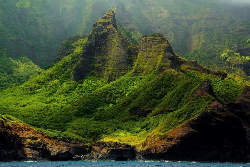 Гавайский коллаж
