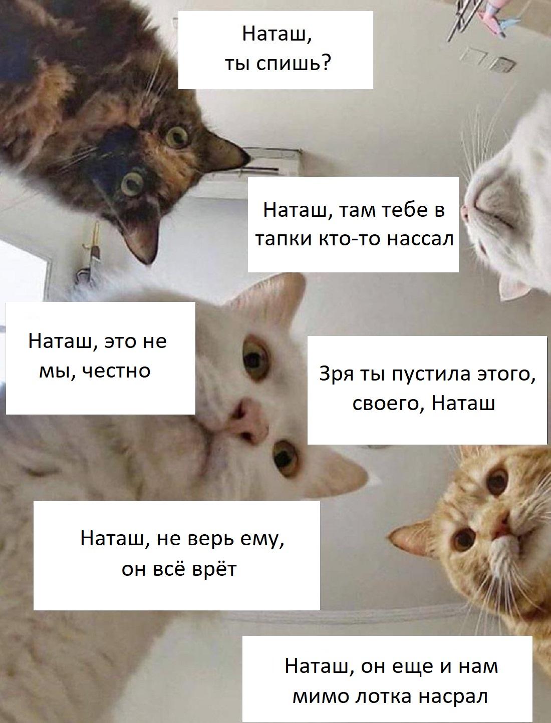 3. Наташ, ты спишь?
