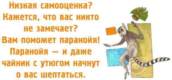 100153096_large_njSkK0FRjc