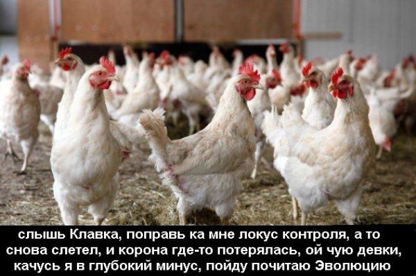 1391677220_novyy-god-kitay-5