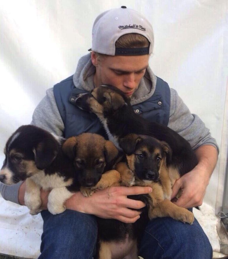 SochiKenworthyPuppies
