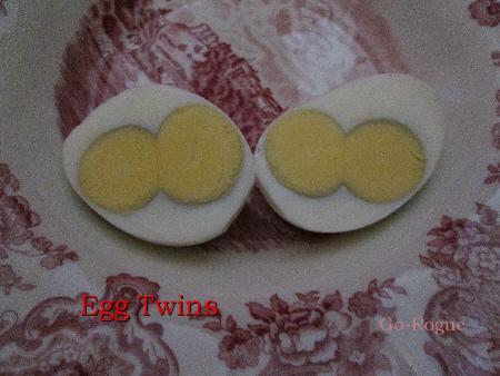 Egg-Twins