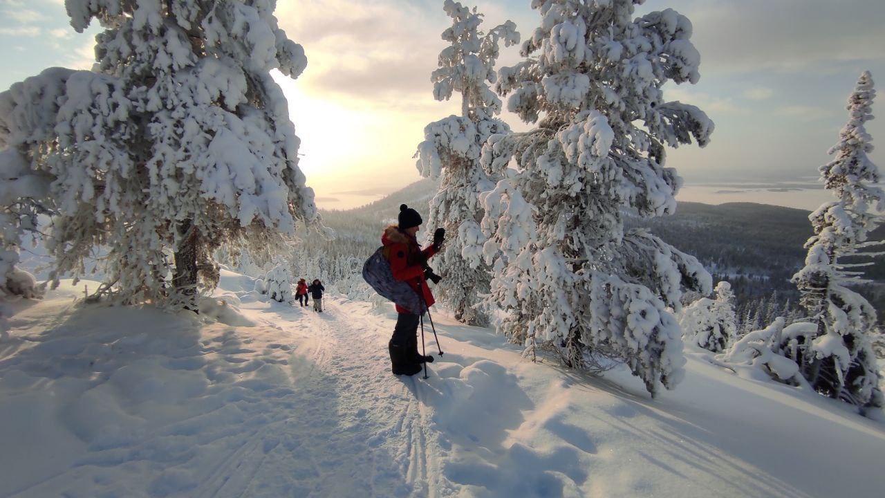 Природа Кольского полуострова. Фото с сайта arctic-safari.com