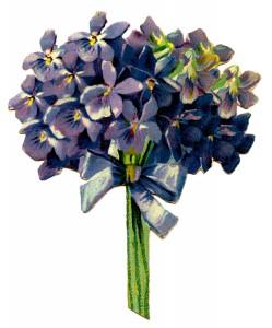 Violets-Vintage-Image-GraphicsFairy