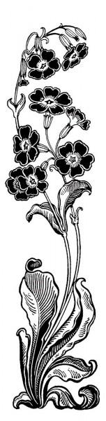 vertflowerborder1